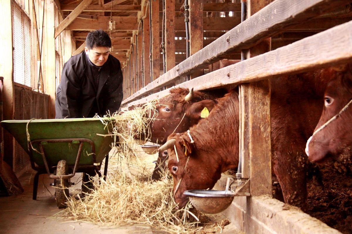 新しい牛肉の基準「牛道」八段セット 米沢牛&短角牛