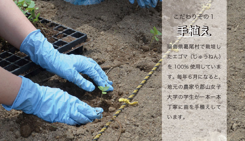 《先行予約・2021年2月中発送予定》【純国産】エゴマ油(150ml)×2本セット