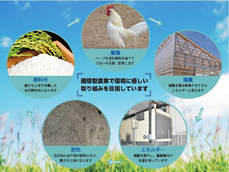 葛尾村産ハーブ鶏むね肉2㎏セット 1㎏×2パック 鶏肉 冷凍