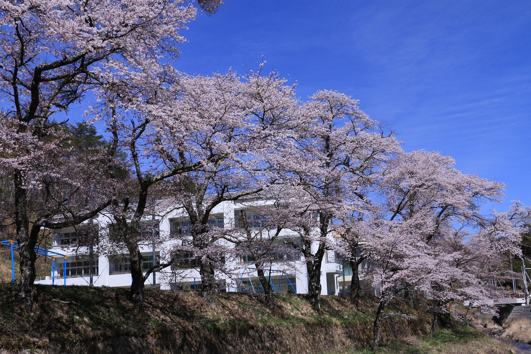葛尾村の風景画像