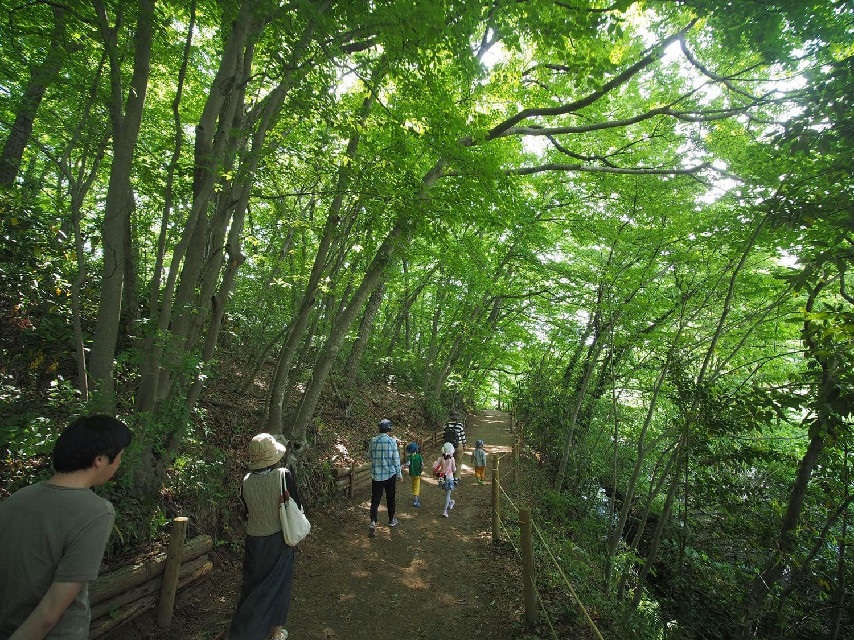 埼玉自然学習センター