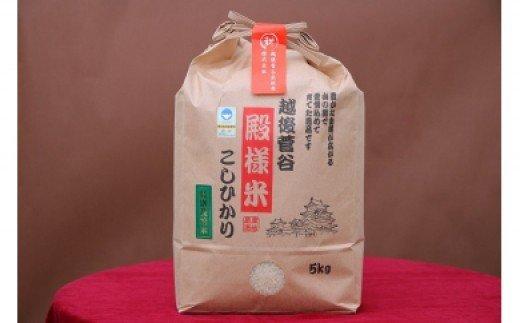 D05【令和2年産】越後菅谷殿様米5kg