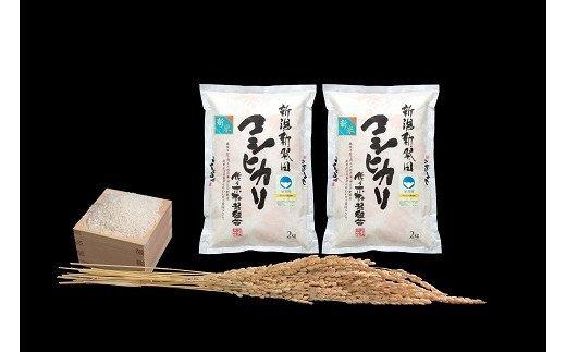 D21【令和2年産】(定期便)特別栽培米コシヒカリ 2㎏×2袋×12ヵ月(新潟県新発田市産)