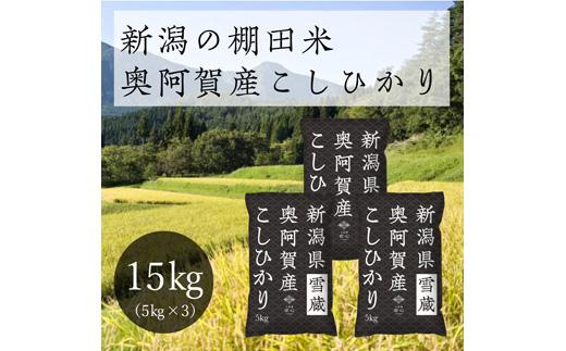 《先行受付・令和3年産米》 新潟県奥阿賀産こしひかり 15kg(5kg ×3袋)
