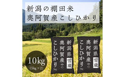 《先行受付・令和3年産米》 新潟県奥阿賀産こしひかり 10kg(5kg ×2袋)