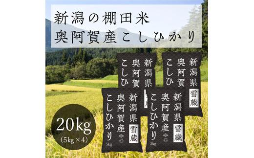 《先行受付・令和3年産米》 新潟県奥阿賀産こしひかり 20kg(5kg ×4袋)