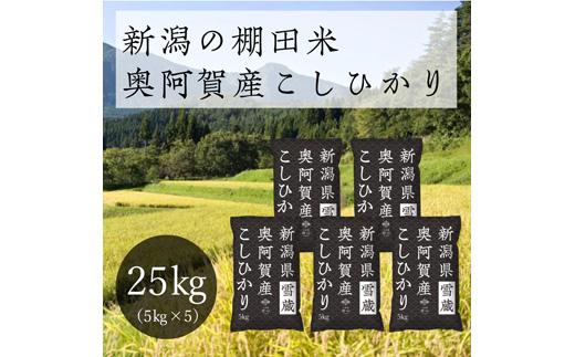 《先行受付・令和3年産米》 新潟県奥阿賀産こしひかり 25kg(5kg ×5袋)