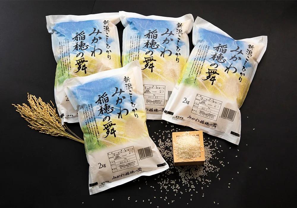 <令和2年産米> 新潟県阿賀町産 コシヒカリ「みかわ稲穂の舞」8kg(2kg×4袋)