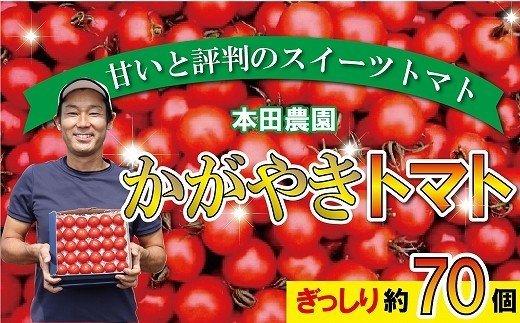 014002. 【人気のスイーツトマト】本田農園のかがやきトマト2箱(約70個)