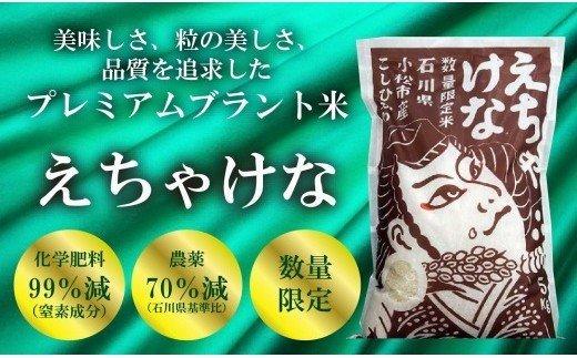 011013. 【令和2年産米】厳選プレミアム米「えちゃけな」 精米5kg