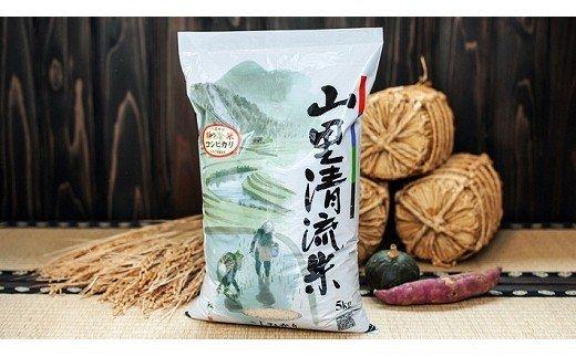 108001. 【定期便】山里清流米コシヒカリ 5kg×12回(毎月)