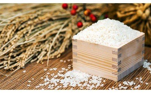 022001. 【有機肥料米】藤子ばぁちゃんのまごころ米 10kg(5kg×2袋)