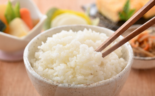 [A016] 【無農薬】【白米】能登のこだわり自然栽培こしひかり『羽咋米』 3kg