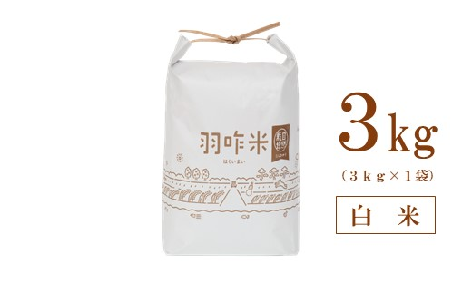 [A063] 【令和3年産・新米予約(11月発送)】【無農薬】【白米】能登のこだわり自然栽培こしひかり『羽咋米』 3kg