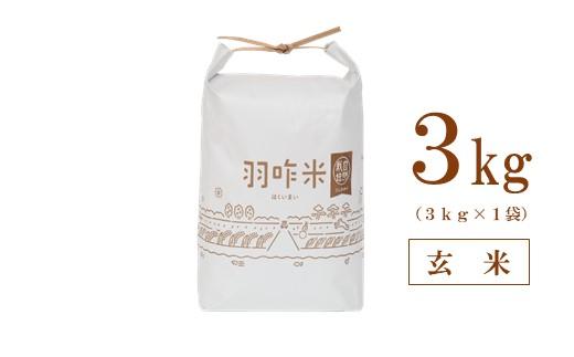[A064] 【令和3年産・新米予約(11月発送)】【無農薬】【玄米】能登のこだわり自然栽培こしひかり『羽咋米』 3kg