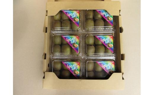 [5839-0122]【山梨県産】新種のキウイフルーツ(レインボーレッド)