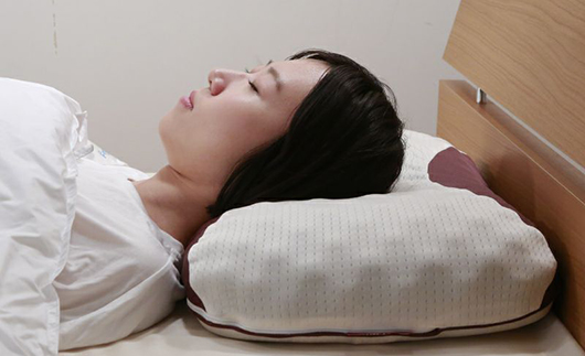 [5839-1104]【昭和西川】ムアツ枕 MP8100