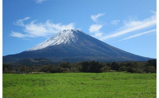 富士山プレミアム牛乳1リットルパック(3本セット×4回)
