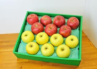 916-003 サンふじりんご&シナノゴールド 5kg(13~16玉) ※11月下旬~12月下旬頃より順次発送予定