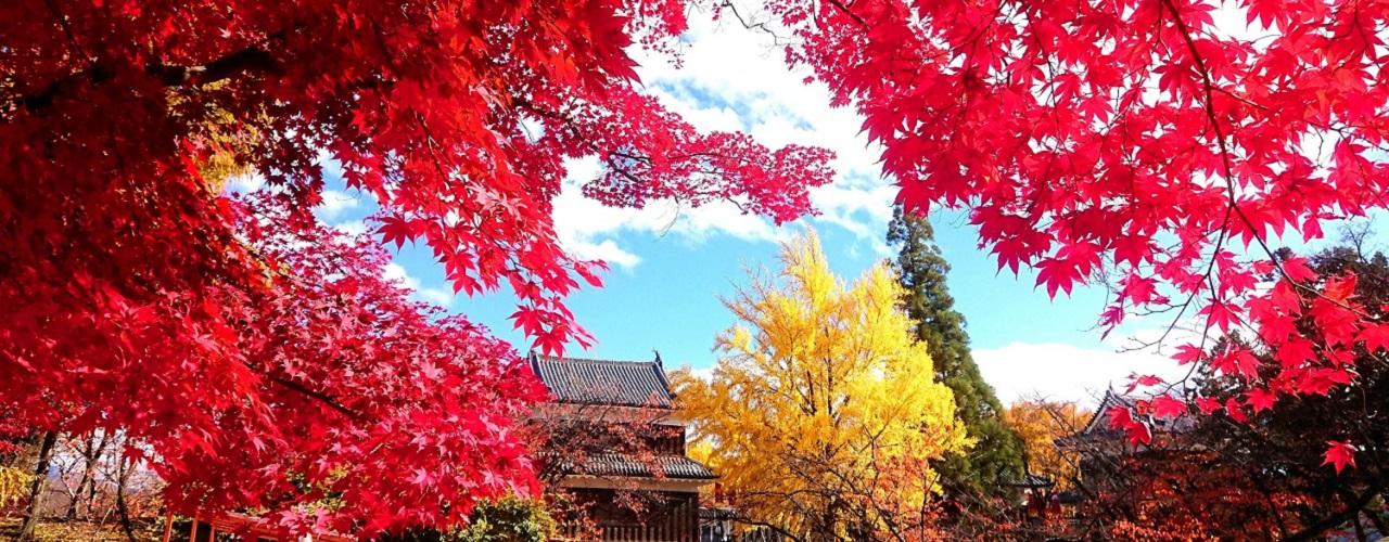 長野県 上田市