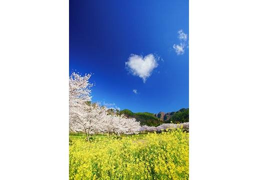 005-007 12枚組ポストカードセット2冊セット(信州上田癒しの風景・信州の絶景パワースポット)