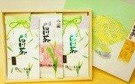 No.8 菊之園厳選 白川茶3本セット
