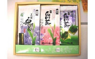 No.20 菊之園 白川茶飲み比べ3本セット