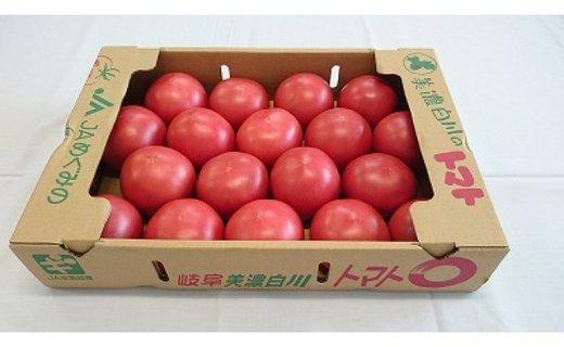 No.139 美濃白川のトマト