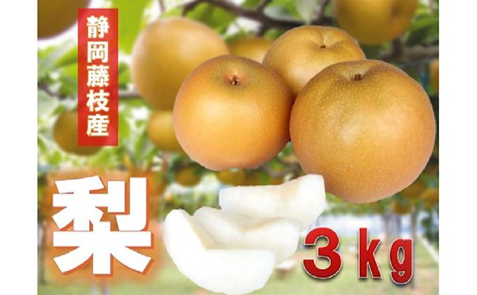 【早期予約 2021年8月出荷】静岡県産 梨 3kg 岡部茶