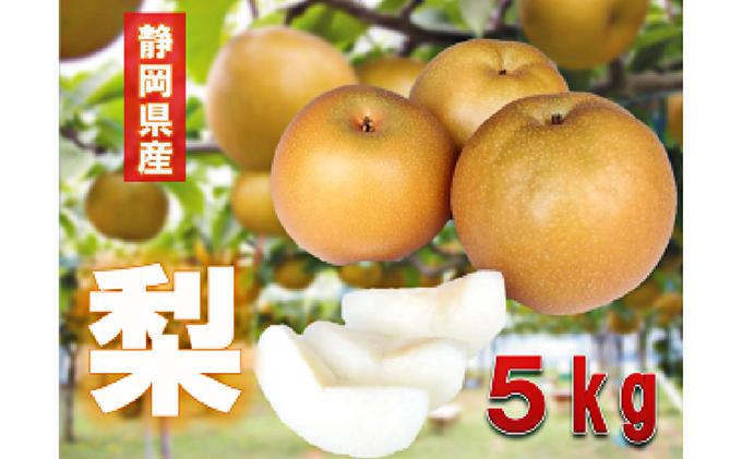 【早期予約 2021年8月出荷】静岡県産 梨 5kg 岡部茶