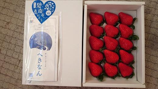 まるで赤いサファイア!!丹精込めた完熟いちご!! 約900g H130-005