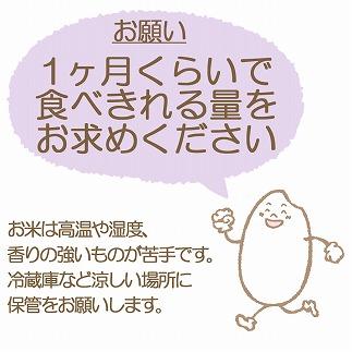 新潟県産コシヒカリ 無洗米 2kg ※6回定期便 安心安全なヤマトライス H074-212