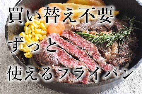 おもいのフライパン 20㎝ 世界で一番お肉がおいしく焼けるフライパン H051-005