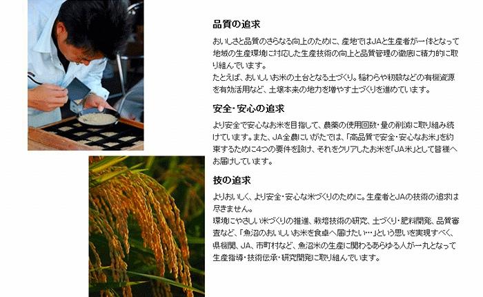 新潟魚沼産コシヒカリ 無洗米 5kg×20袋 ※定期便6回 安心安全なヤマトライス H074-146