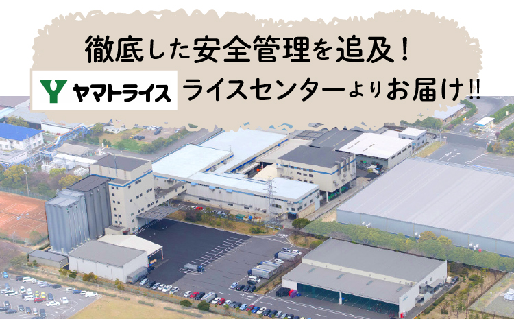 北海道産ななつぼし 無洗米 10kg ※定期便6回 安心安全なヤマトライス H074-103