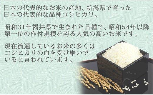新潟県産コシヒカリ 5kg ※定期便6回 下旬発送 安心安全なヤマトライス H074-169