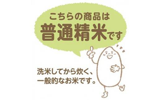 新潟県産新之助 2kg×4袋 ※定期便6回 安心安全なヤマトライス H074-038