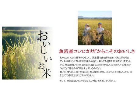 新潟県魚沼産コシヒカリ 無洗米 5kg ※定期便12回 安心安全なヤマトライス H074-108