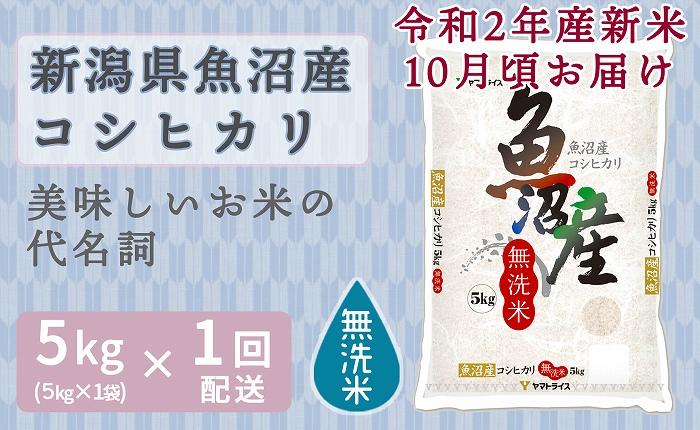 新米予約 新潟魚沼産コシヒカリ 無洗米 5kg 安心安全なヤマトライス H074-137