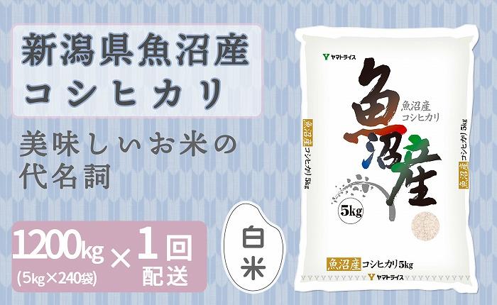 新潟魚沼産コシヒカリ 5kg×240袋 安心安全なヤマトライス H074-140