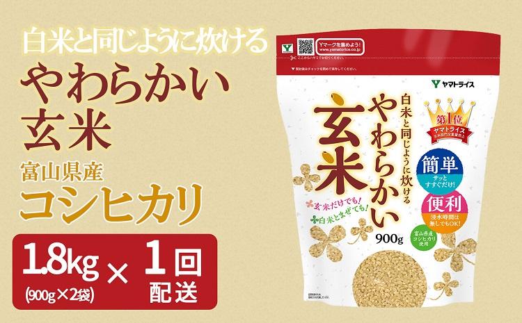 やわらかい玄米 900g×2袋 H074-086
