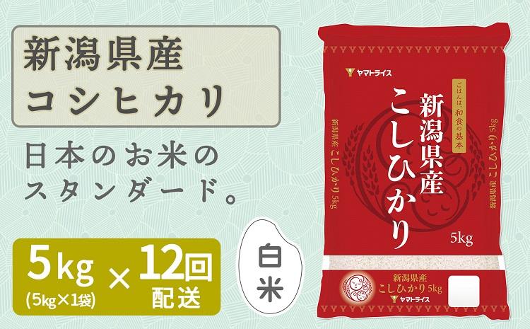 新潟県産コシヒカリ 5kg ※定期便12回 下旬発送 安心安全なヤマトライス H074-172