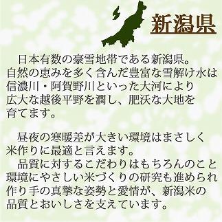 新潟県産コシヒカリ 無洗米 6㎏(2㎏×3袋) 安心安全なヤマトライス H074-196
