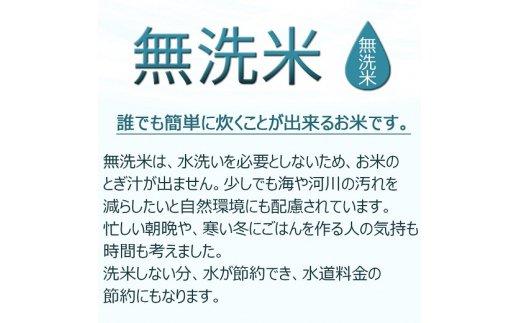岩手県産農薬節減ひとめぼれ 無洗米 10kg ※定期便12回 安心安全なヤマトライス H074-050