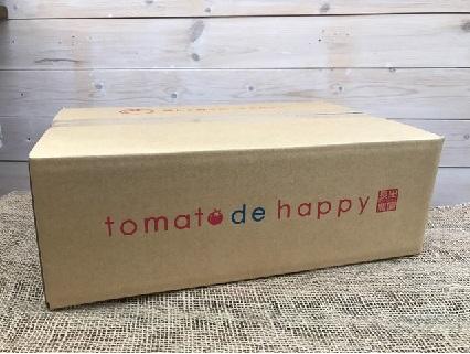 新食感!奇跡のさくらんぼトマト 1㎏ 11月~3月発送 H004-050