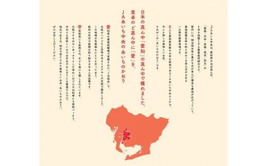 【定期便】愛知県産あいちのかおり10kg×12回(計120kg) H017-027