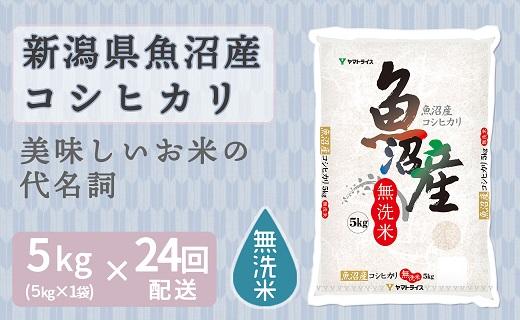 新潟県魚沼産コシヒカリ 無洗米5kg ※24回定期便 安心安全なヤマトライス H074-233