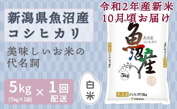 新米予約 新潟魚沼産コシヒカリ 5kg 安心安全なヤマトライス H074-135