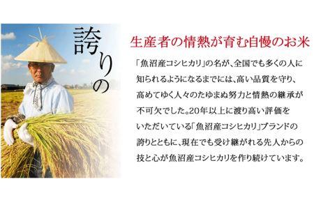 新潟県魚沼産コシヒカリ 無洗米 5kg ※定期便6回 安心安全なヤマトライス H074-106