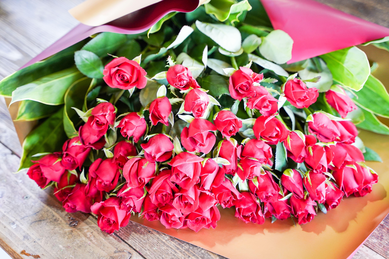 【圧巻の50本】真っ赤なバラの花束 H092-019